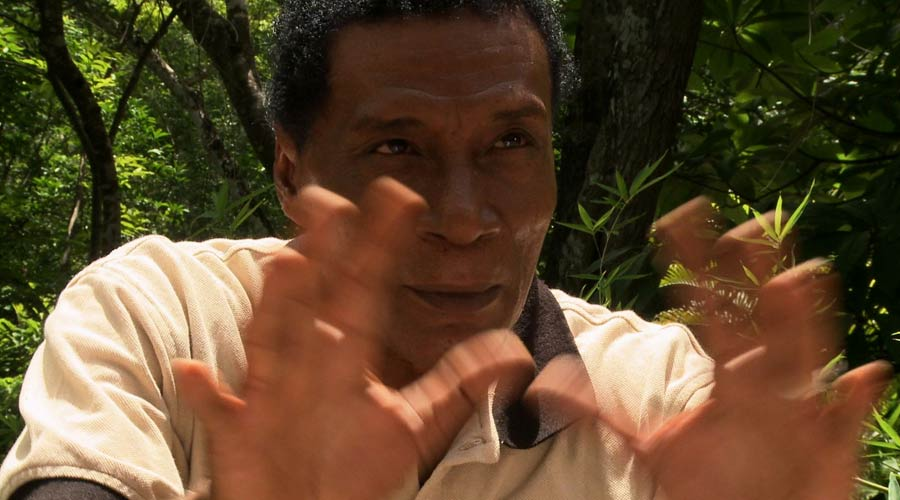 Watch the<em> Out of the Maya Tombs </em>Trailer >>